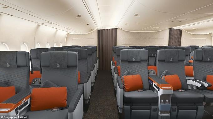 Khoang máy bay giường đôi như phòng khách sạn-10