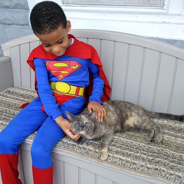 Cậu bé 5 tuổi có khả năng chăm sóc, chơi đùa cùng mèo hoang-1