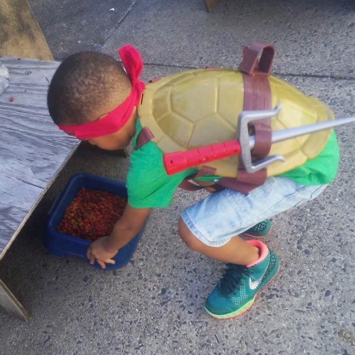 Cậu bé 5 tuổi có khả năng chăm sóc, chơi đùa cùng mèo hoang-3