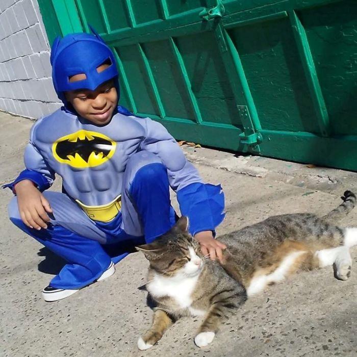 Cậu bé 5 tuổi có khả năng chăm sóc, chơi đùa cùng mèo hoang-4