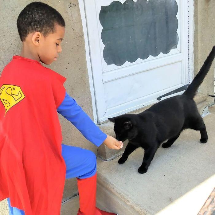 Cậu bé 5 tuổi có khả năng chăm sóc, chơi đùa cùng mèo hoang-5