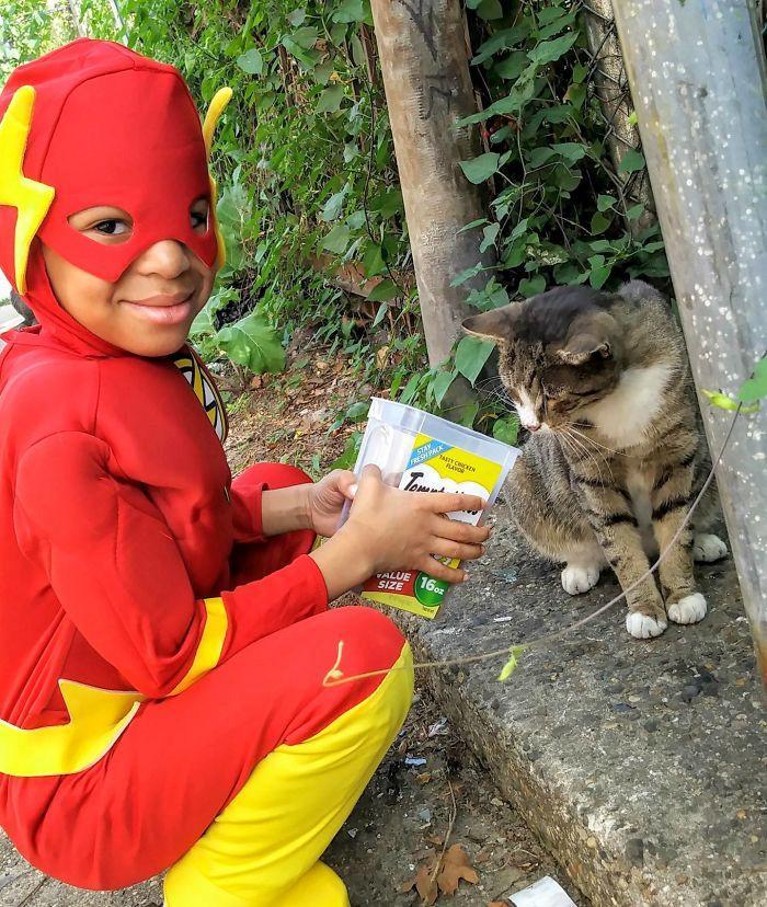 Cậu bé 5 tuổi có khả năng chăm sóc, chơi đùa cùng mèo hoang-6