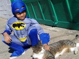Cậu bé 5 tuổi có khả năng chăm sóc, chơi đùa cùng mèo hoang