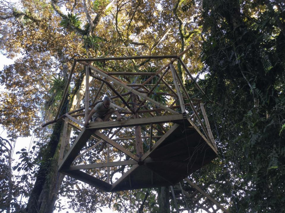 Cặp vợ chồng làm nhà lơ lửng trên cây giữa rừng-5