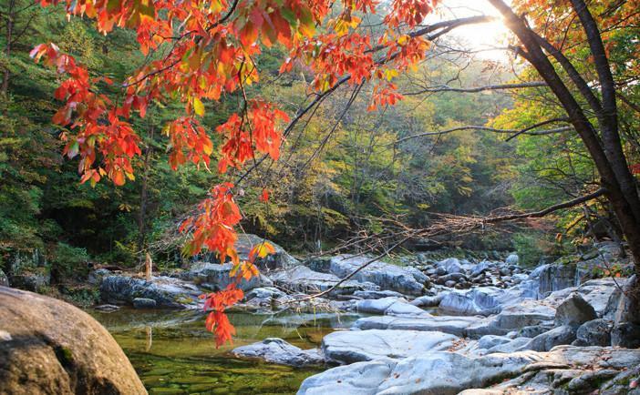 Những địa điểm lý tưởng để ngắm mùa thu ở Hàn Quốc-2