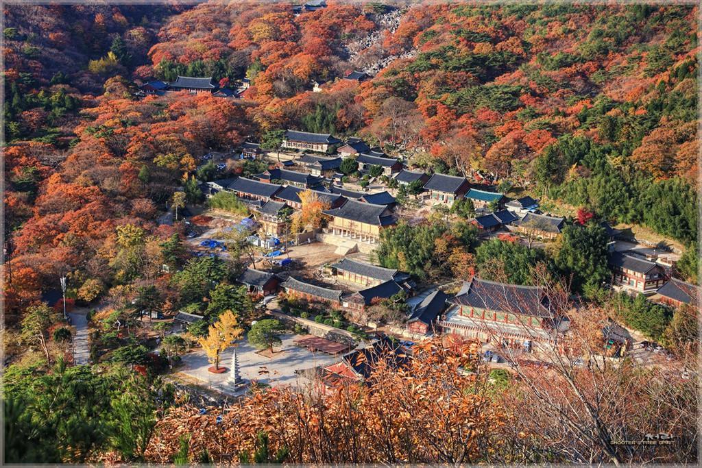 Những địa điểm lý tưởng để ngắm mùa thu ở Hàn Quốc-6