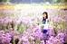 Thảo nguyên hoa nằm ở phố Thạch Cầu, Long Biên trải dài tít tắp trên diện tích rộng 6ha trở thành điểm đến yêu thích của nhiều gia đình và bạn trẻ ở Hà Nội trong thời gian gần đây. Ảnh: Nguyễn Phương Trang