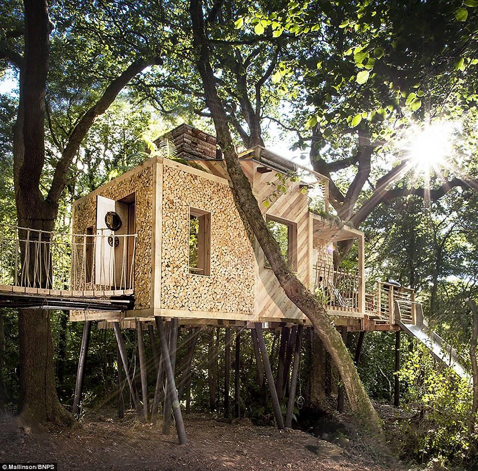 Ngôi nhà trên cây sang trọng ở Anh-1