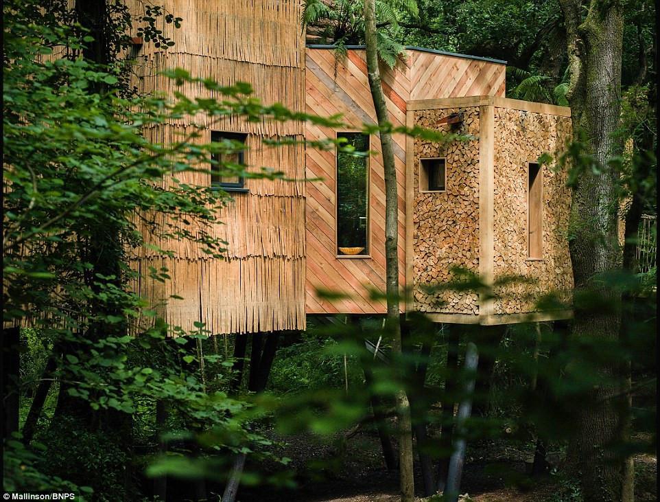 Ngôi nhà trên cây sang trọng ở Anh-6