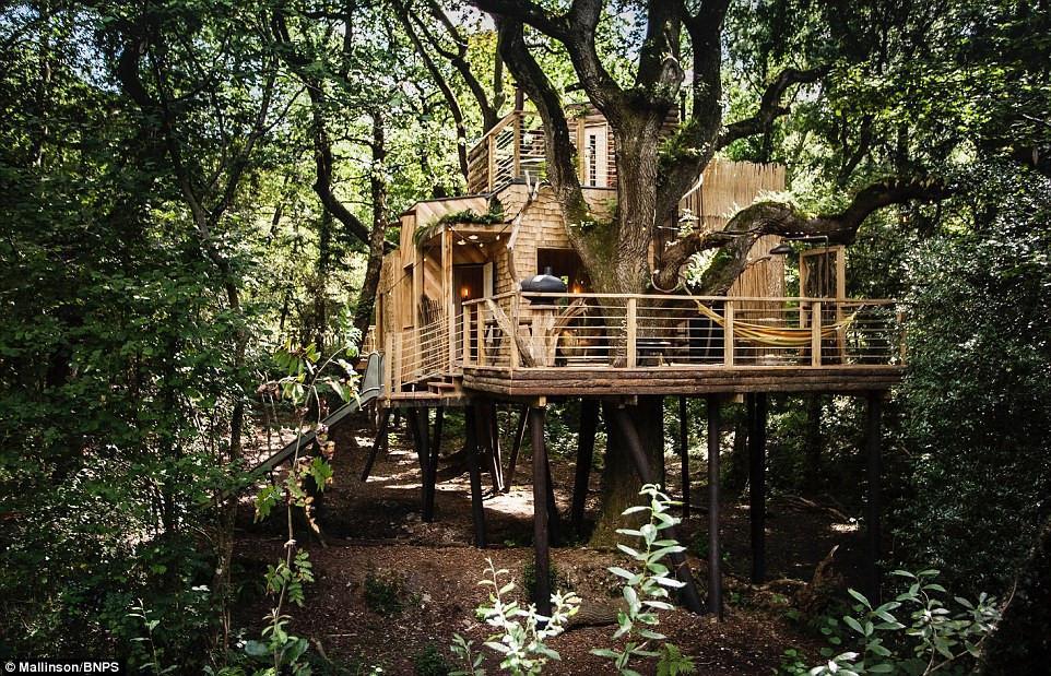 Ngôi nhà trên cây sang trọng ở Anh-8