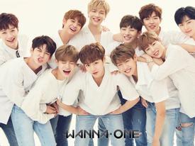 Sao Hàn 14/11: 'Nhóm nhạc quốc dân' Wanna One kiếm được 67 tỷ đồng chỉ trong 3 tháng