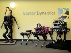 Chú chó robot không đầu đang khuấy đảo cộng đồng mạng