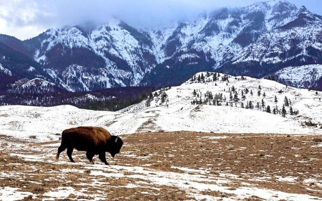 Những địa điểm du lịch đẹp lung linh khi vào mùa đông-13