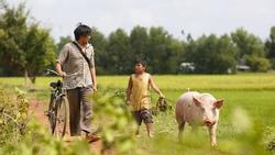 'Ông bố nông dân' Lương Mạnh Hải la hét hoảng loạn khi bị cua kẹp