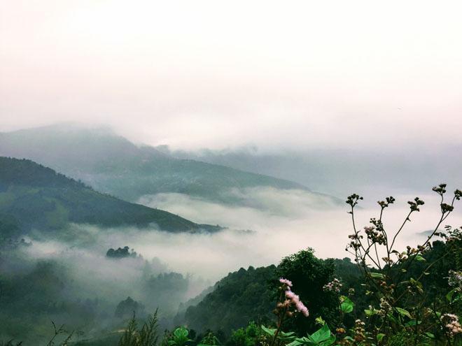 Gió đổi mùa, rủ nhau lên Tà Xùa săn mây-4