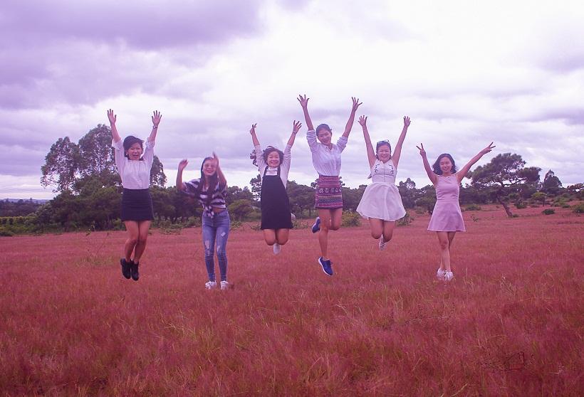 Đồi cỏ hồng ở Gia Lai đẹp như tranh vẽ hút khách đầu đông-4