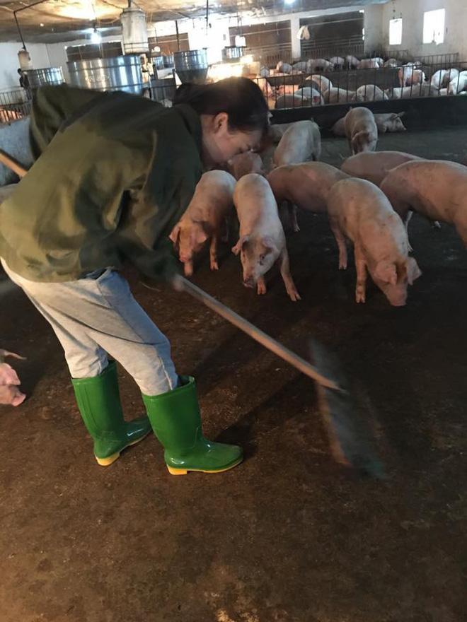 Cô nàng chăn lợn xinh đẹp gây tò mò nhất Facebook hôm nay!-3