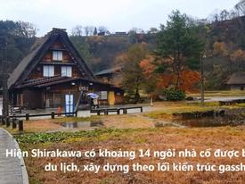 Ngôi làng 300 năm tuổi 'đẹp hơn tranh vẽ' ở Nhật