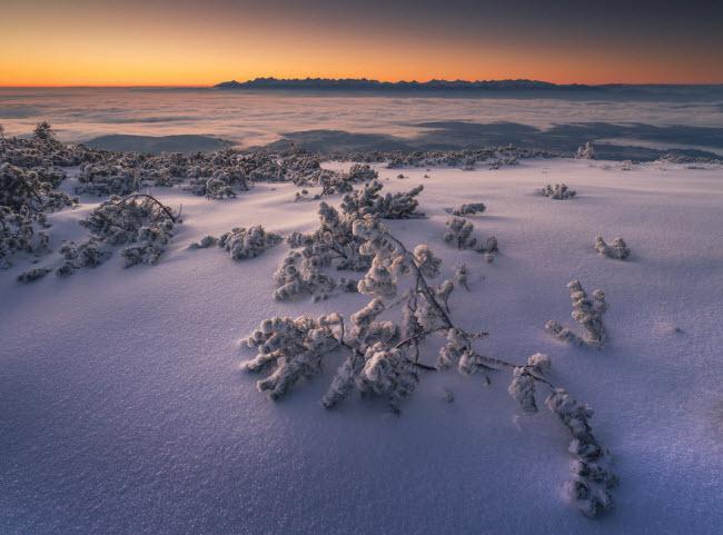 Lạc vào mùa đông kỳ diệu trên núi ở Ba Lan-10