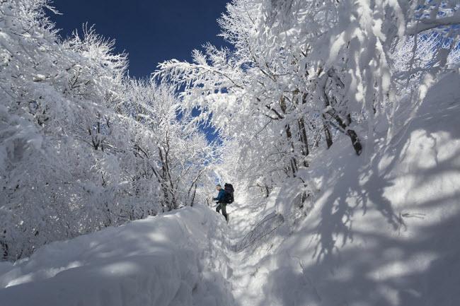 Lạc vào mùa đông kỳ diệu trên núi ở Ba Lan-11