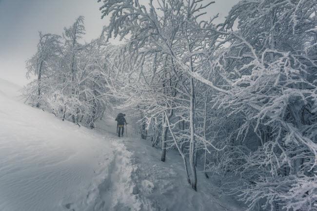 Lạc vào mùa đông kỳ diệu trên núi ở Ba Lan-12