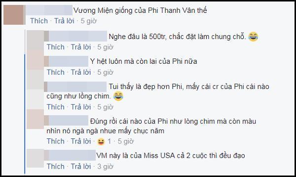 Vương miện Phi Thanh Vân vừa được trao vướng nghi án hàng nhái sản xuất theo lô-4