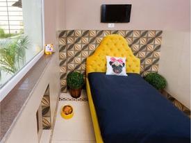 Bên trong khách sạn sang trọng, lộng lẫy cho chó đầu tiên ở Ấn Độ