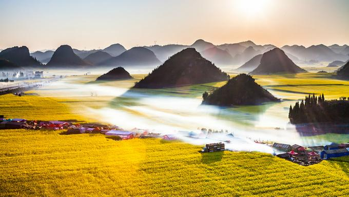 Biển hoa cải vàng ngút tầm mắt ở Trung Quốc-1