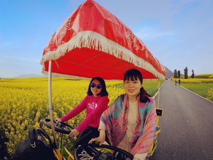 Biển hoa cải vàng ngút tầm mắt ở Trung Quốc-6