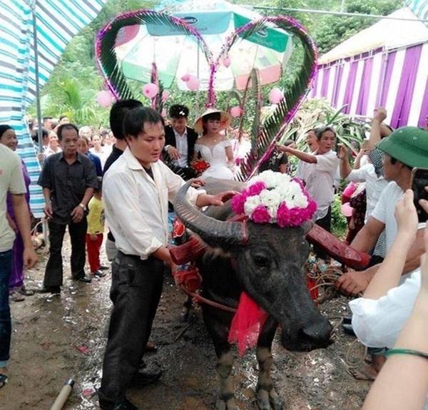 Những màn rước dâu có một không hai tại Việt Nam-5