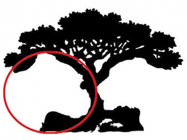Đoán tính cách thông qua hình ảnh đầu tiên bạn nhìn thấy trong bức tranh-4