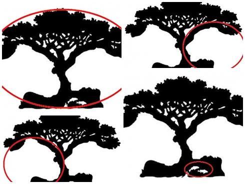 Đoán tính cách thông qua hình ảnh đầu tiên bạn nhìn thấy trong bức tranh