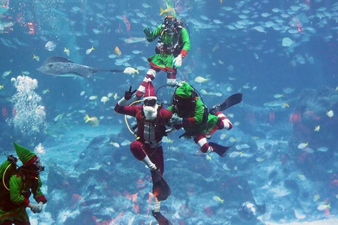 4 điểm đón Giáng sinh ở Singapore cho kỳ nghỉ cuối năm-4