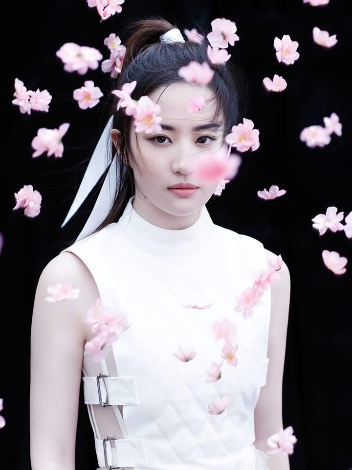 5 sự kiện chấn động màn ảnh Hoa ngữ 2017: Lâm Tâm Như bị tố giả tạo, Lưu Diệc Phi một màu diễn xuất-12