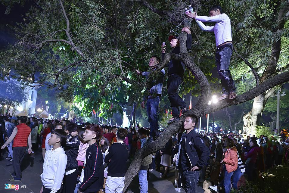 Trèo cây, giẫm đạp bồn hoa xem ca nhạc đêm Noel-6