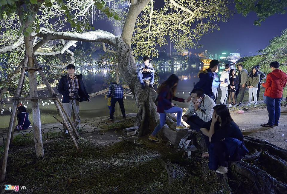 Trèo cây, giẫm đạp bồn hoa xem ca nhạc đêm Noel-9