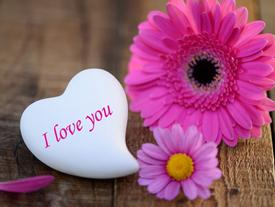 Hãy cứ yêu hết mình hôm nay, sao biết được ngày mai ta mất nhau lúc nào