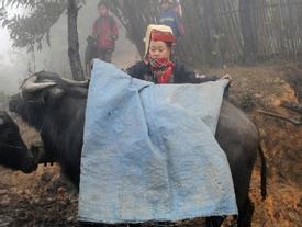 Dự báo thời tiết 30/12: Không khí lạnh tăng cường, Bắc Bộ rét đậm, vùng núi rét hại, thấp nhất 6 độ C