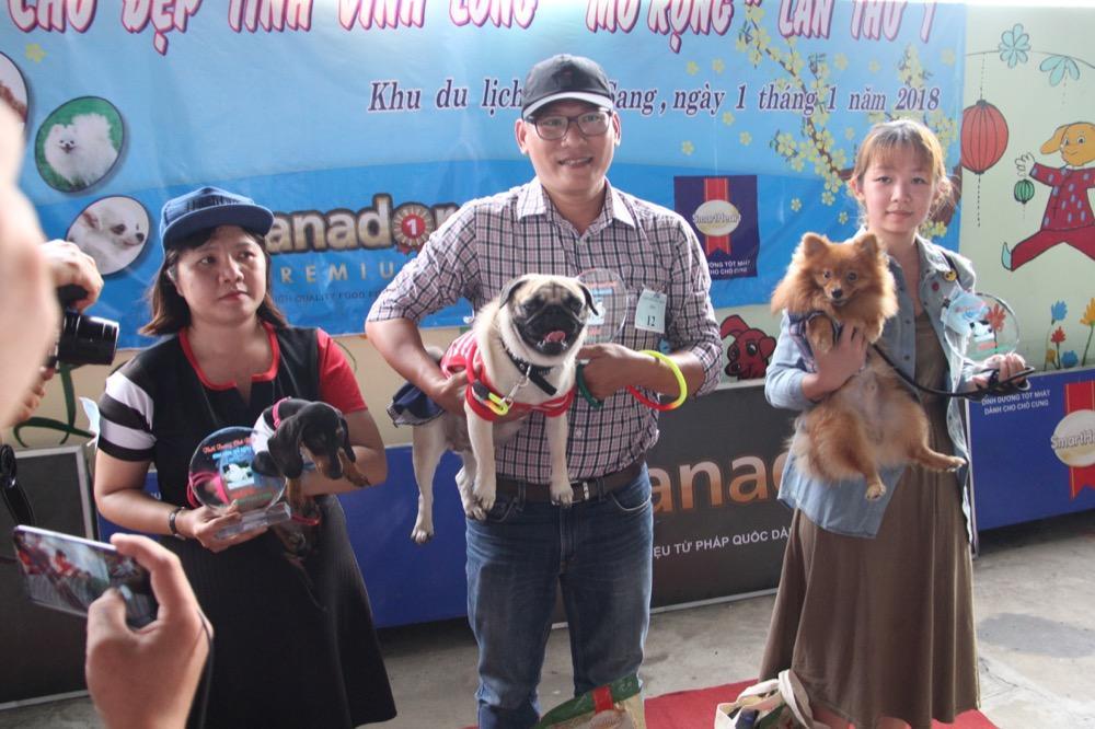 Ngắm mỹ khuyển trong Hội thi Chó đẹp lần đầu tổ chức tại miền Tây-1
