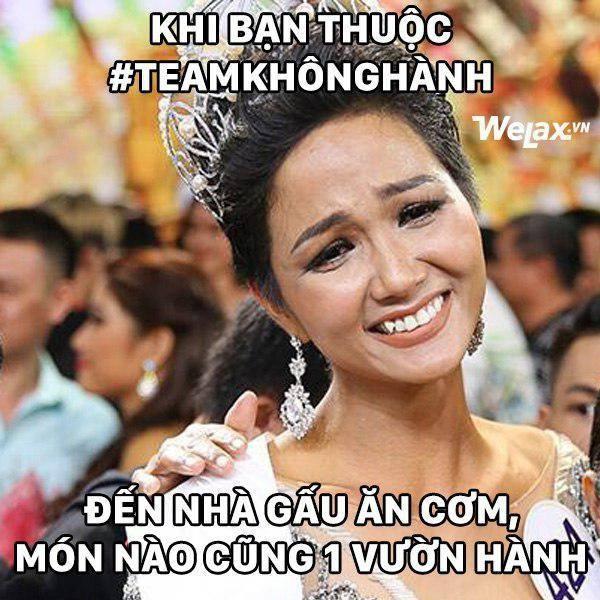 Đăng quang Hoa hậu Hoàn vũ, H'Hen Niê vượt mặt Hoàng Thuỳ thành thánh ảnh chế-3
