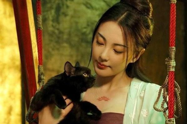 Điện ảnh Trung Quốc thống trị đề cử giải Oscar châu Á 2018-1