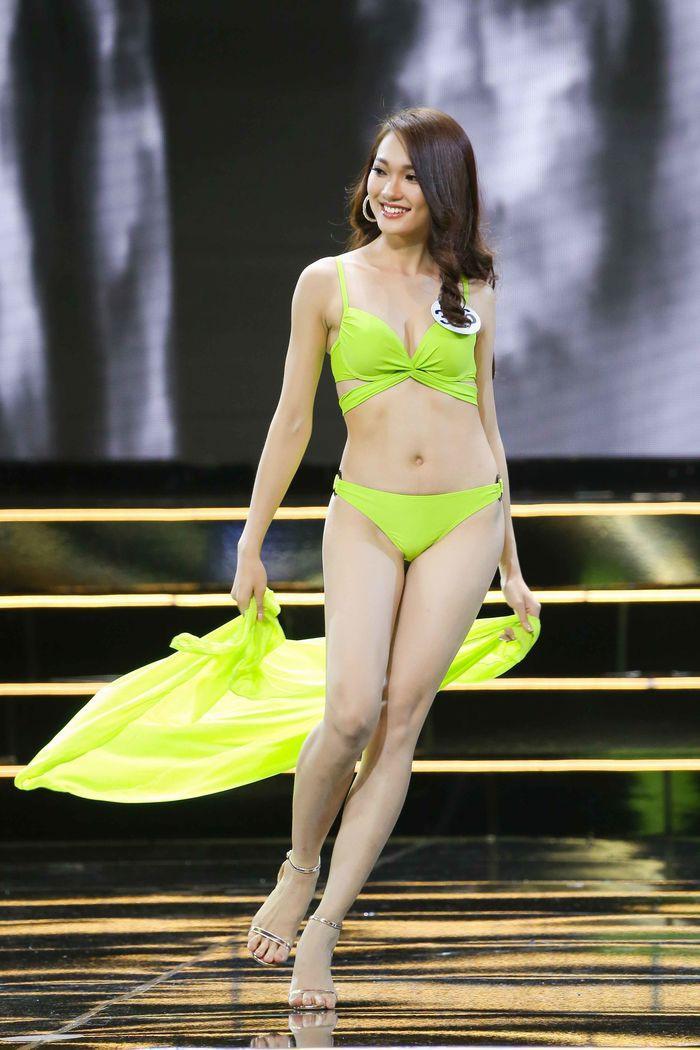 Hoa hậu Hoàn vũ Việt Nam 2019 chưa tổ chức nhưng đã có 4 mỹ nhân tuyên bố giật vương miện-3