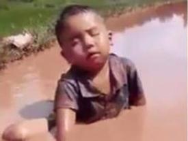 Cậu bé hồn nhiên ngủ gật trên đồng hút triệu lượt xem