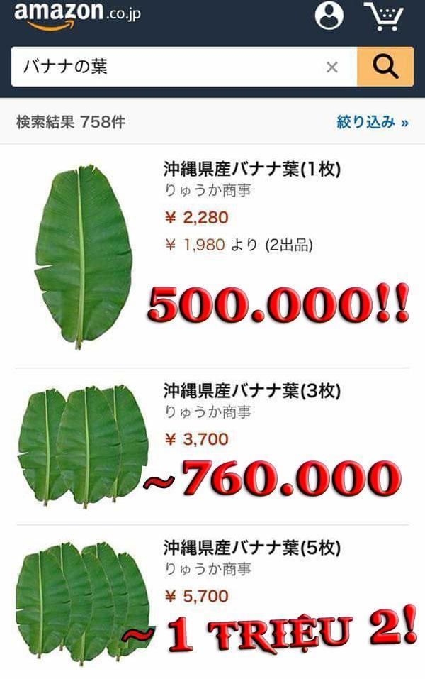 Ở Việt Nam thì rẻ như cho, sang Nhật lá chuối có giá 500 nghìn đồng/lá-2