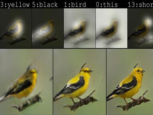 AI từ Microsoft có thể vẽ bất cứ thứ gì bạn mô tả