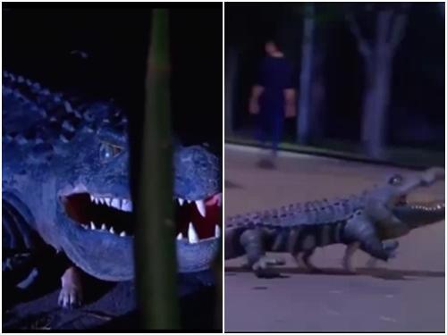 Dân tình náo loạn khi 'cá sấu chó' xuất hiện trên phố