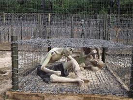 Côn Đảo: Từ 'địa ngục trần gian' đến thiên đường du lịch