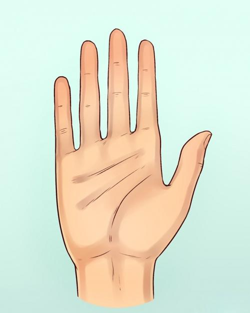 Hình dáng ngón tay biểu hiện rõ mồn một tính cách của một người-3