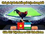 Hồi hộp xem 'gà tiên tri' dự đoán chung kết U23 Việt Nam và U23 Uzbekistan