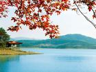 Tới Thường Châu xem chung kết U23, không thể bỏ qua hồ nước đẹp huyền bí này